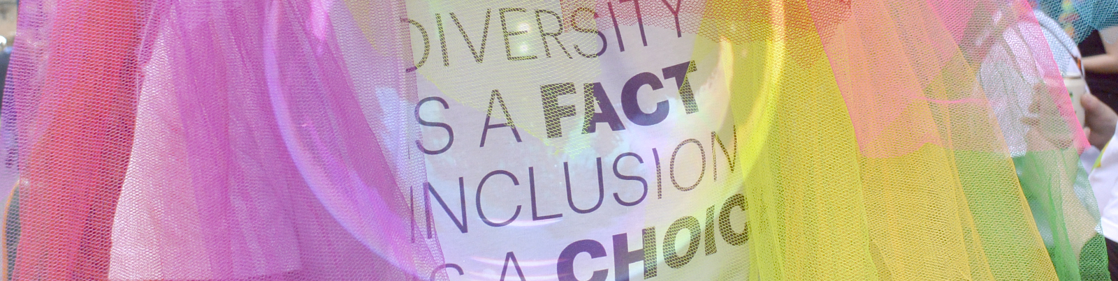 header_pride_diversity-and-inclusion_01