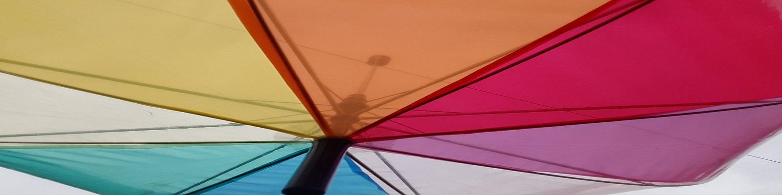 paraplue