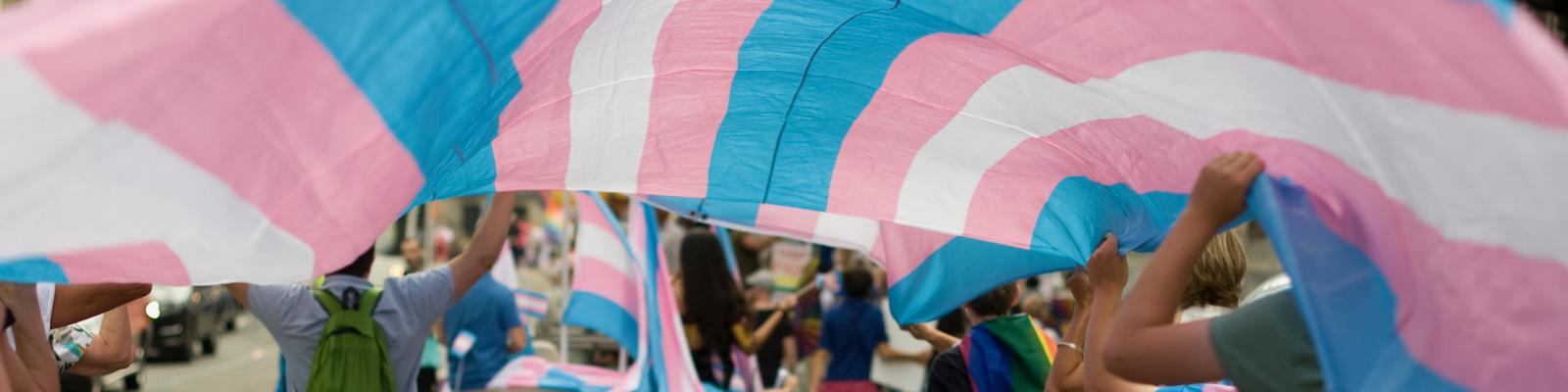 transgendervlag-met-mensen